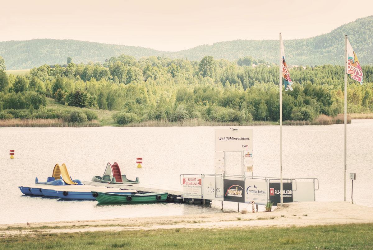 Seestern am Olbersdorfer See in Zittau